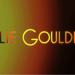 Ellie Goulding Tour Visuals